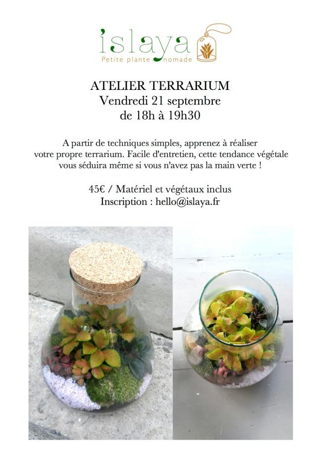 Atelier terrarium - 8 Petion